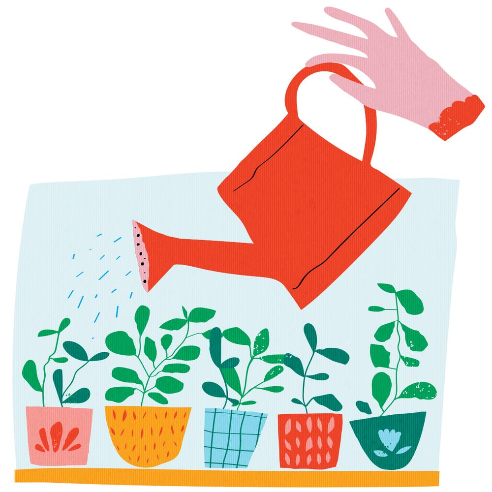 watering basil_Bloom.png