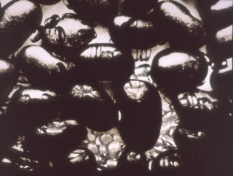 1994D.JPG