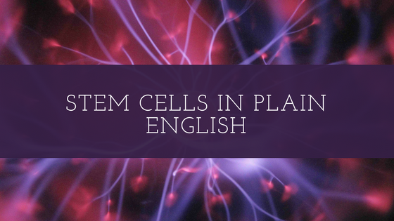 Stem Cells in Plain English.png