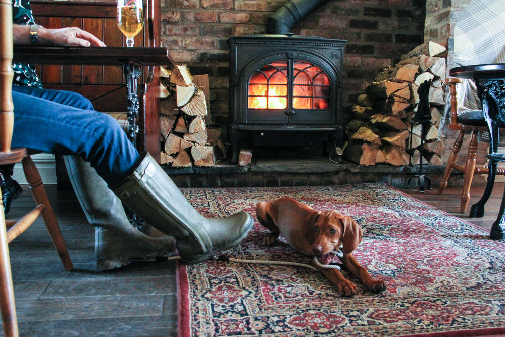 Dogs welcome and real log fire