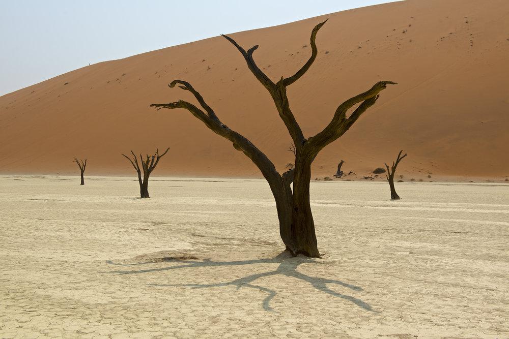 africa0016.jpg