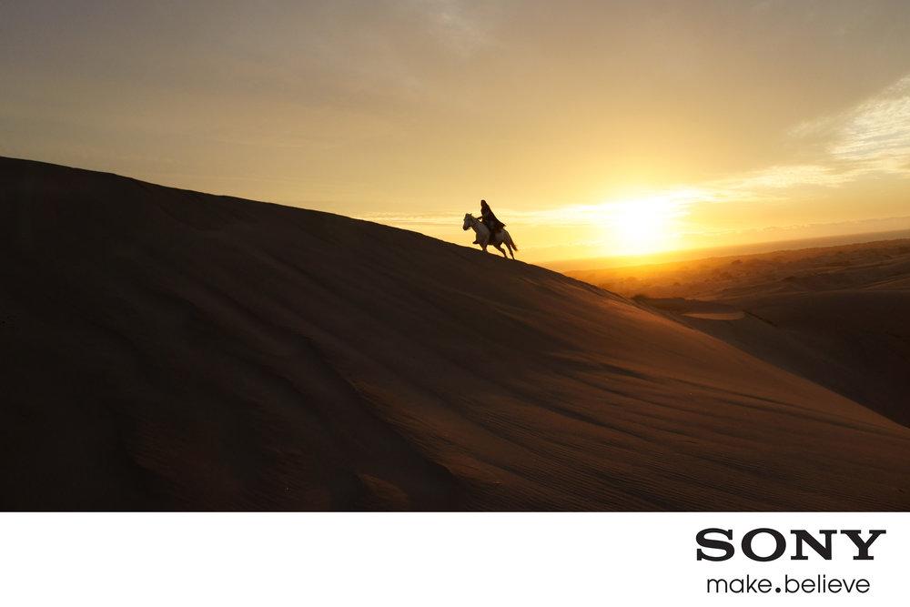 SONY2.jpg