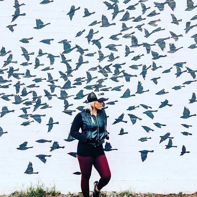 Well Hello #fearkicker @fitnesswithrosieherreraaz  Loving watching you soar to new heights! #soar2019 #freetofly #kickfearintheface