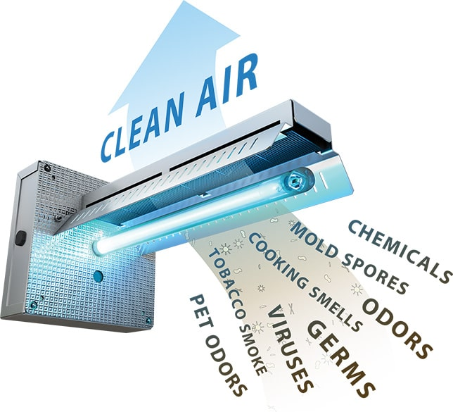 UV Light Bulbs act as an air filter to kill airborne allergens such as mold and bacteria..