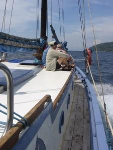 Condor yacht