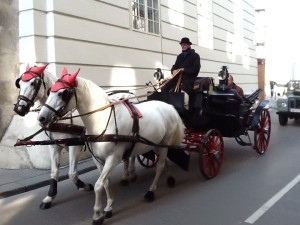 Wien carriage