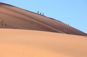 Sossusflei climbers
