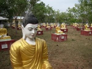 """Buddha Garden"" at Bodhi Tataung"