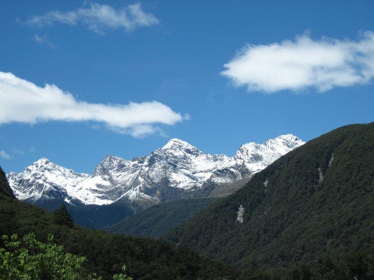 NZ-Aus+2012+435.jpg