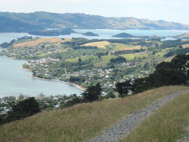 NZ-Aus+2012+634.jpg
