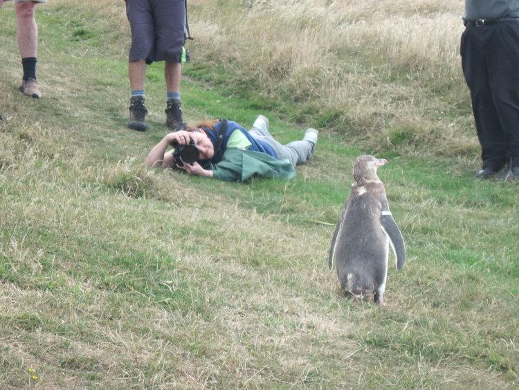 NZ-Aus+2012+674.jpg