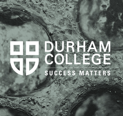 Durham College:  Art, ongoing