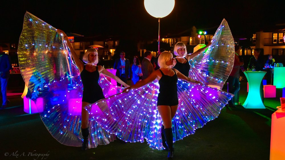Wing Dance -