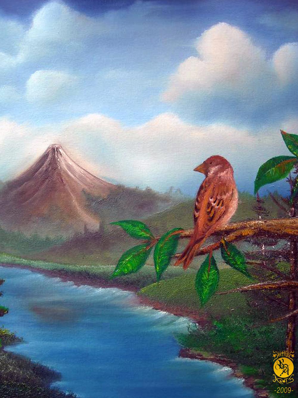 (landscape) littlebird.jpg