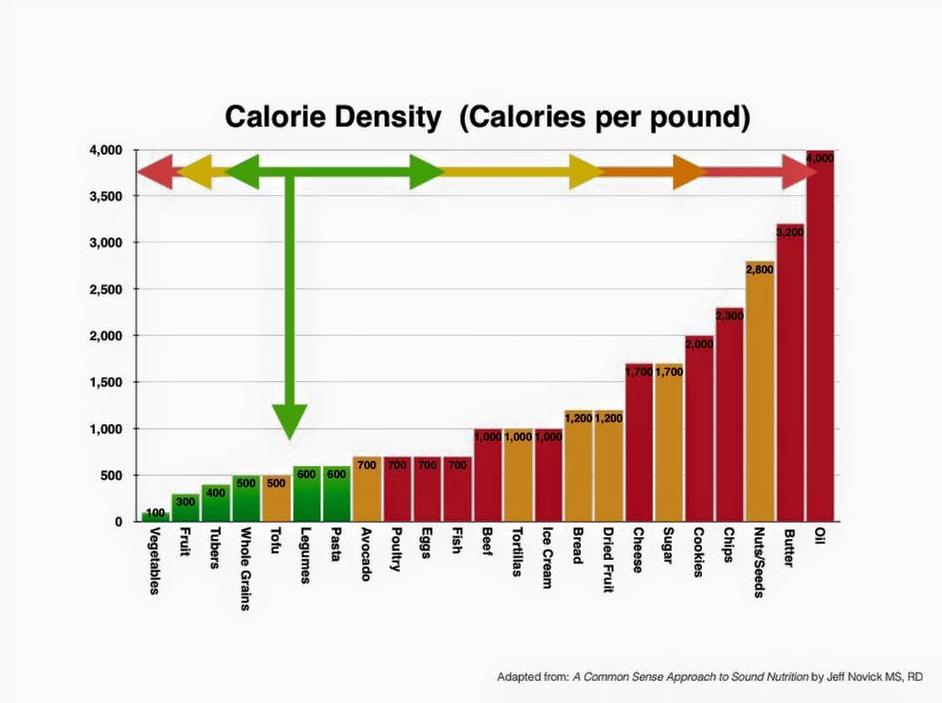 calorie density.jpg