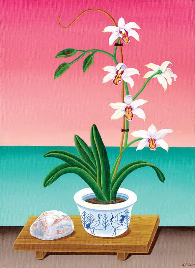 jans-orchid-raul-del-rio.jpg