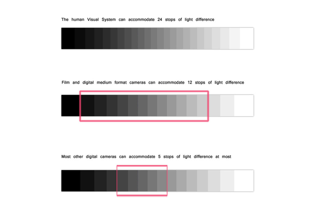 CREDIT @ PHOTOGRAPHY.TUTSPLUS.COM ,NOTE THAT NEWER DIGITAL CAMERAS HAVE AROUND 14 STOPS OF DYNAMIC RANGE.  AS YOU CAN SEE IN THIS ILLUSTRATION THE HUMAN EYE CAN REGISTER UP TO 24 STOPS OF DYNAMIC RANGE. (24 LEVELS OF GREYS FROM BLACK TO WHITE).A STANDARD 35MM FULL FRAME CAMERA WILL BE ABLE TO REGISTER AROUND 12 STOPS OF DYNAMIC RANGE.TO SUMMARISE, THE MORE DYNAMIC RANGE THE MORE DETAILS ARE REGISTERED IN THE HIGHLIGHT AND THE SHADOWS RATHER THAN JUST TURNING INTO PURE BLACK OR PURE WHITE.
