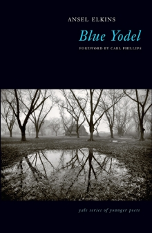 Blue Yodel Book Cover.jpg