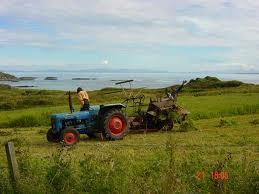 Organic-farming3.jpg