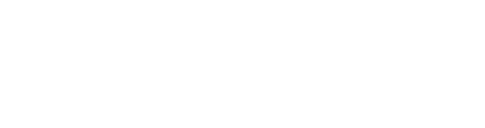 pointofdifferencewhite-4x.png