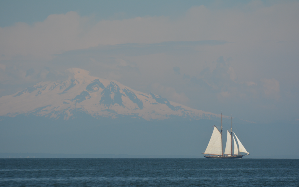 A tall ship with Mount Baker in the background. Photo by Alanna Vivanni