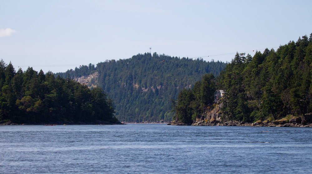 Dodd's Narrows - a scenic, narrow pass that we travel through most days. Photo by Natalie Reichenbacher