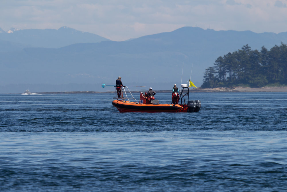 We were lucky enough to NOAA on the water doing research!Photo by Natalie Reichenbacher