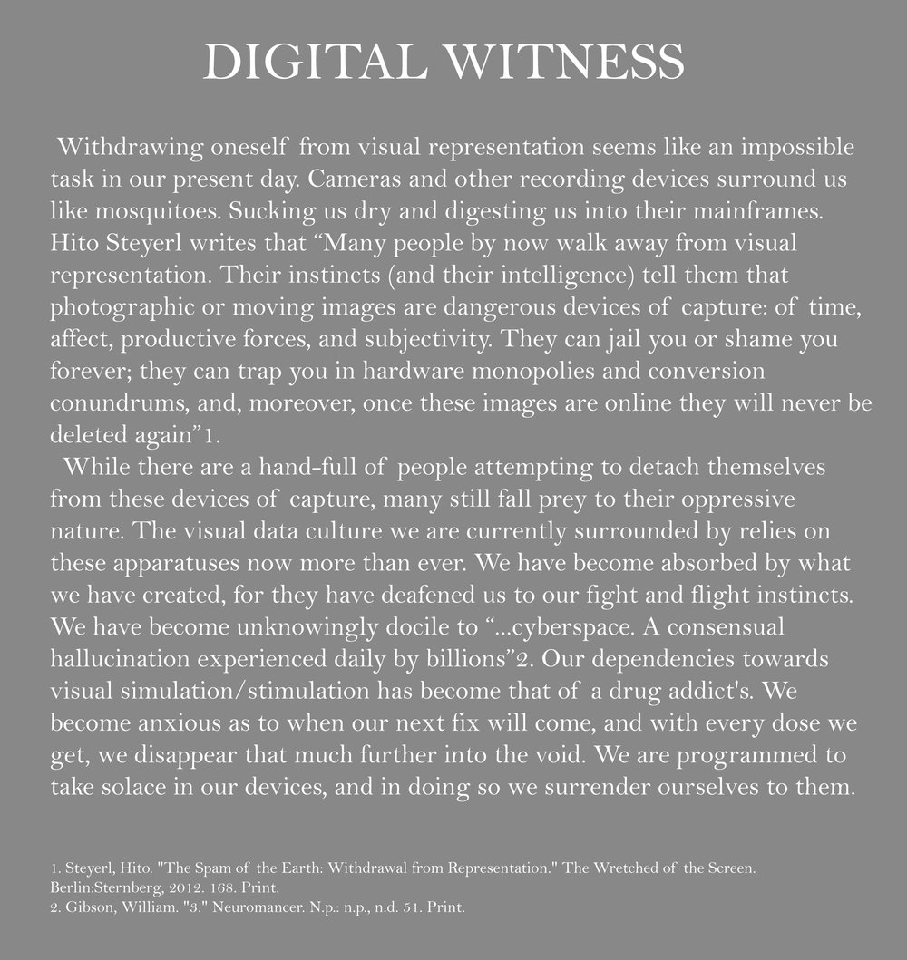 Artist Statement digital witness 4.jpg
