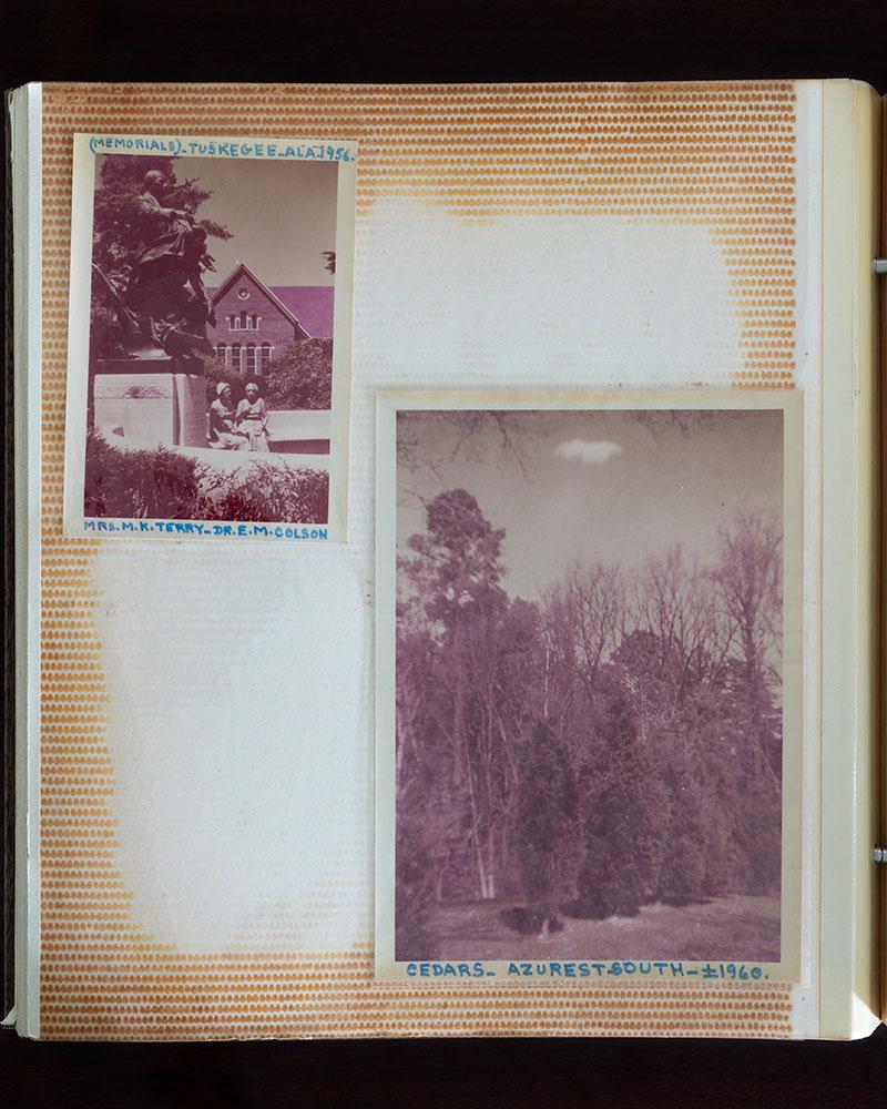 "Cedars   (from the series ""Azurest"")   24"" x 20"" archival inkjet print 2018"