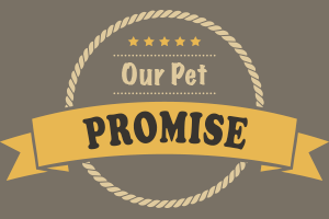 Our healthy pet promise