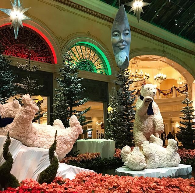 Falling asleep and dreaming about all the different ways Ellie Bauman and Co could decorate the Bellagio 😍😴 #daretodream #masterpiece #holidaywonderland