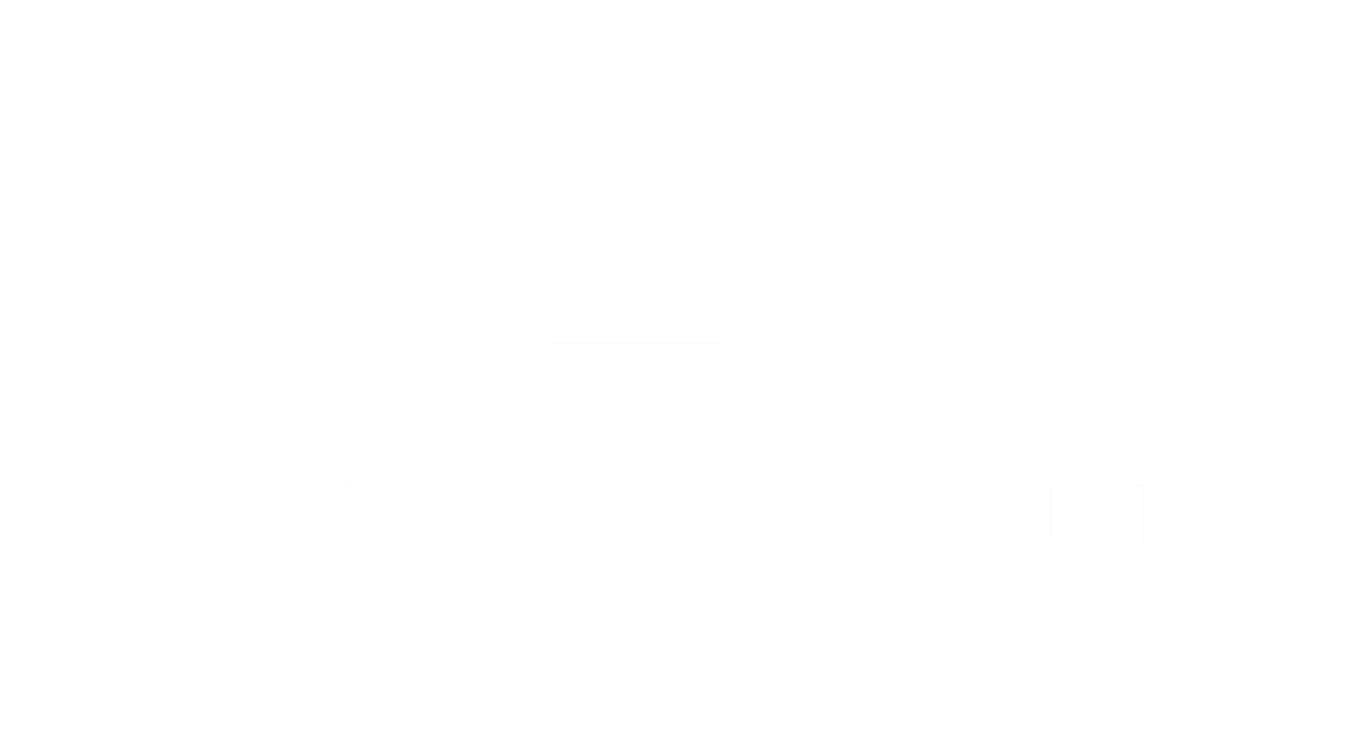 Sylver Group LLC