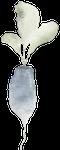 radishclear.png
