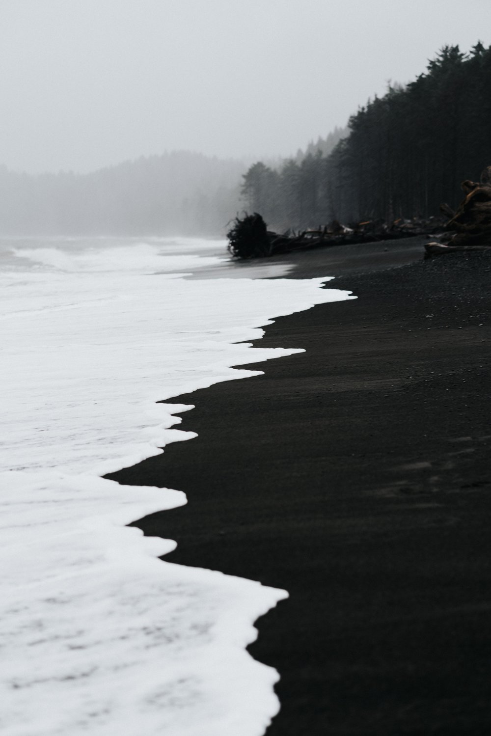 Rialto Beach, Washington USA