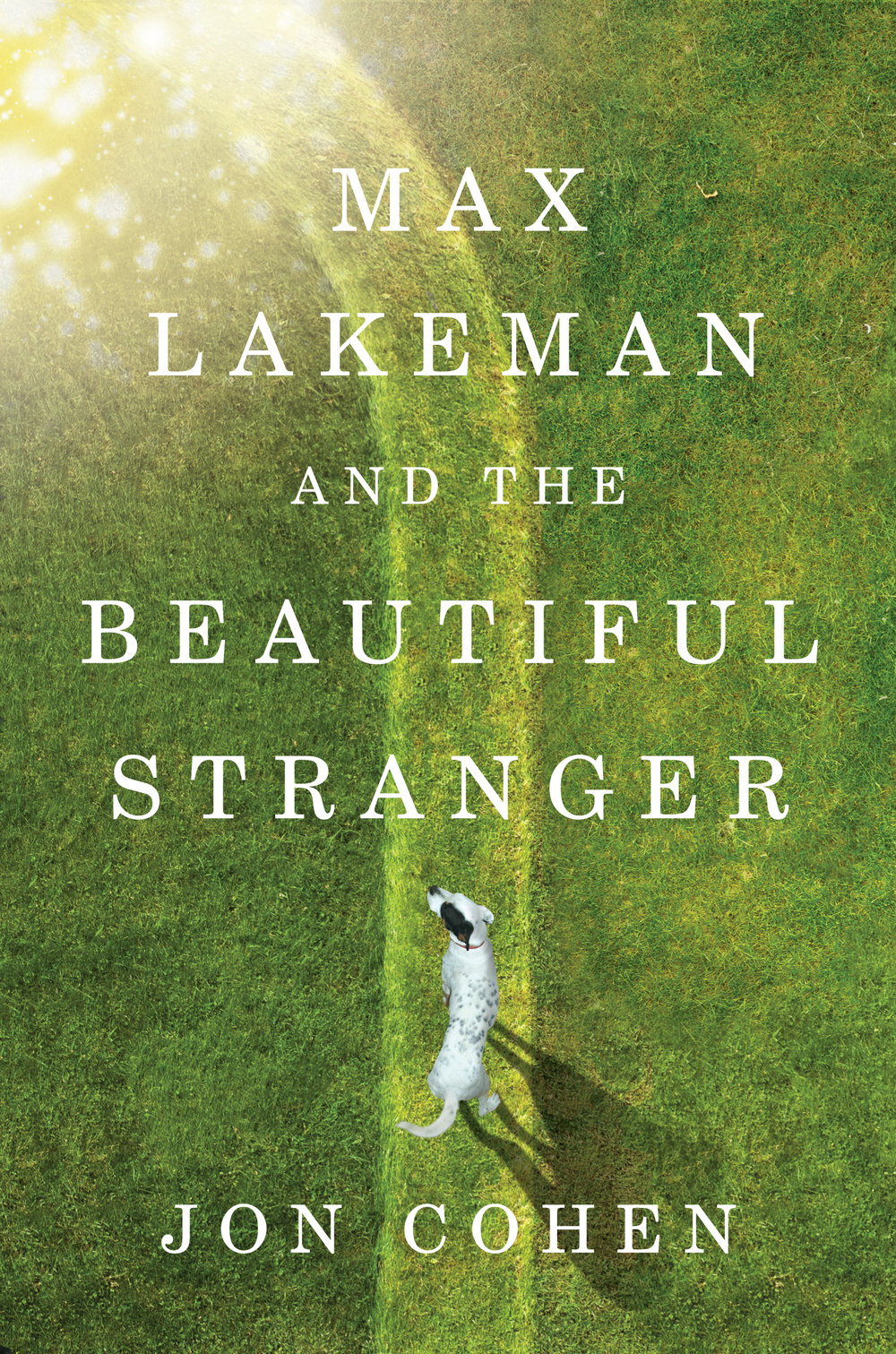 MAX LAKEMAN AND THE BEAUTIFUL STRANGER.jpg