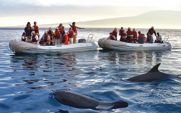 Americas-Ecuador-Galapagos-Family-Galapagos-590x370.jpg