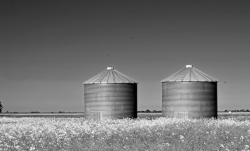 agriculture-architecture-b-w-1058398.jpg