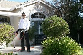 - ExterminatorSilver Star Pest ControlContact: Jim Woodard(214) 675-3784