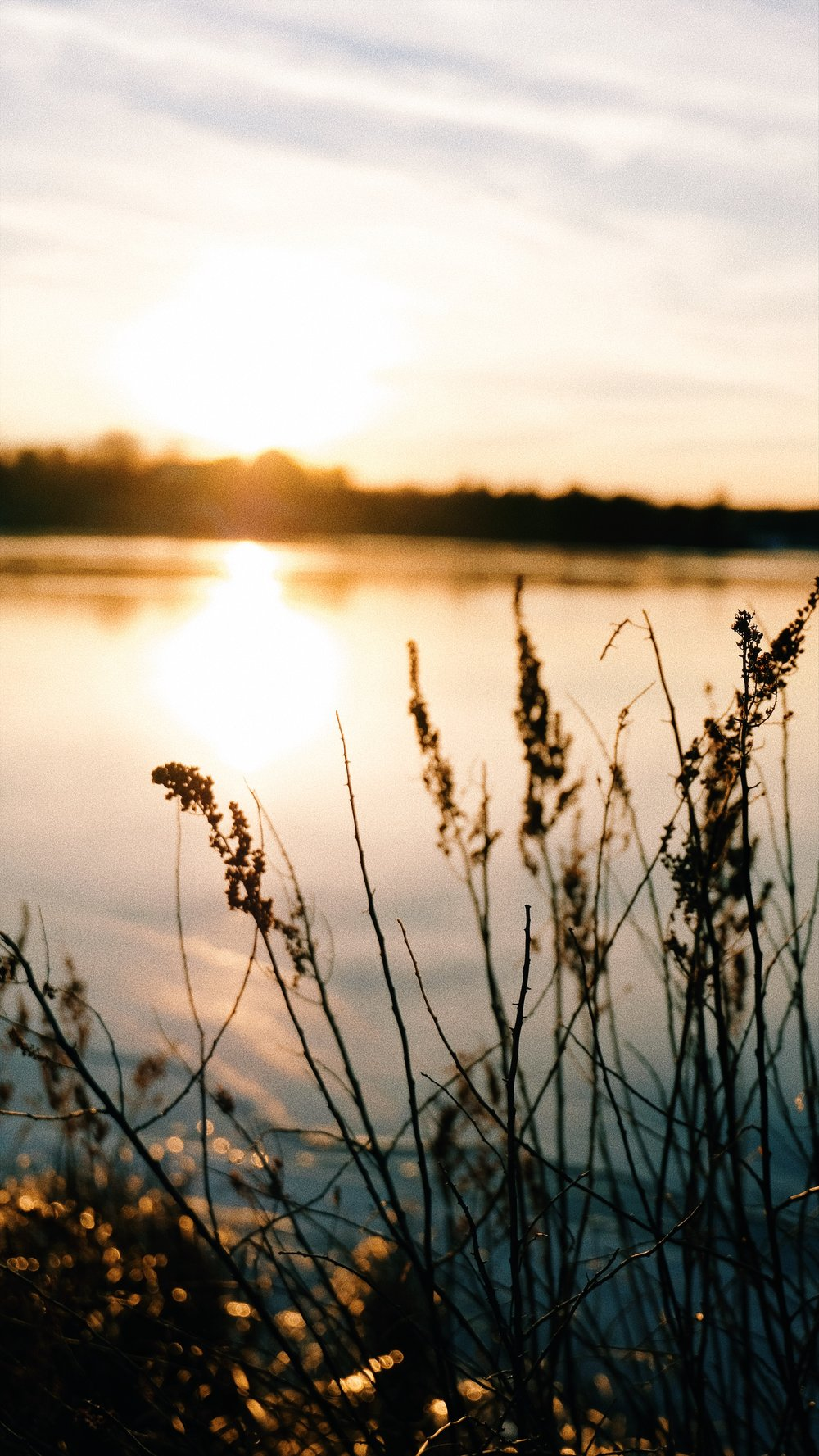 golen-hour-lake-edge-beautiful