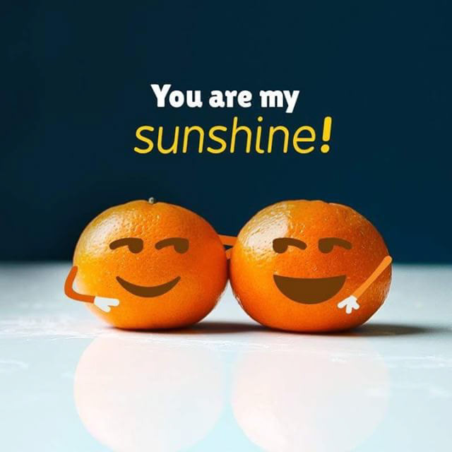 darling-clementines-you-are-my-sunshine.jpg