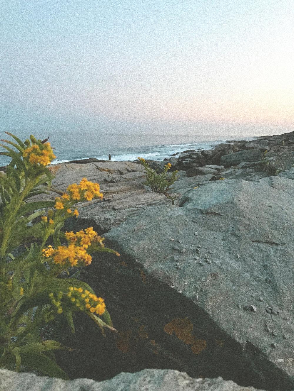 portland-maine-ocean-view