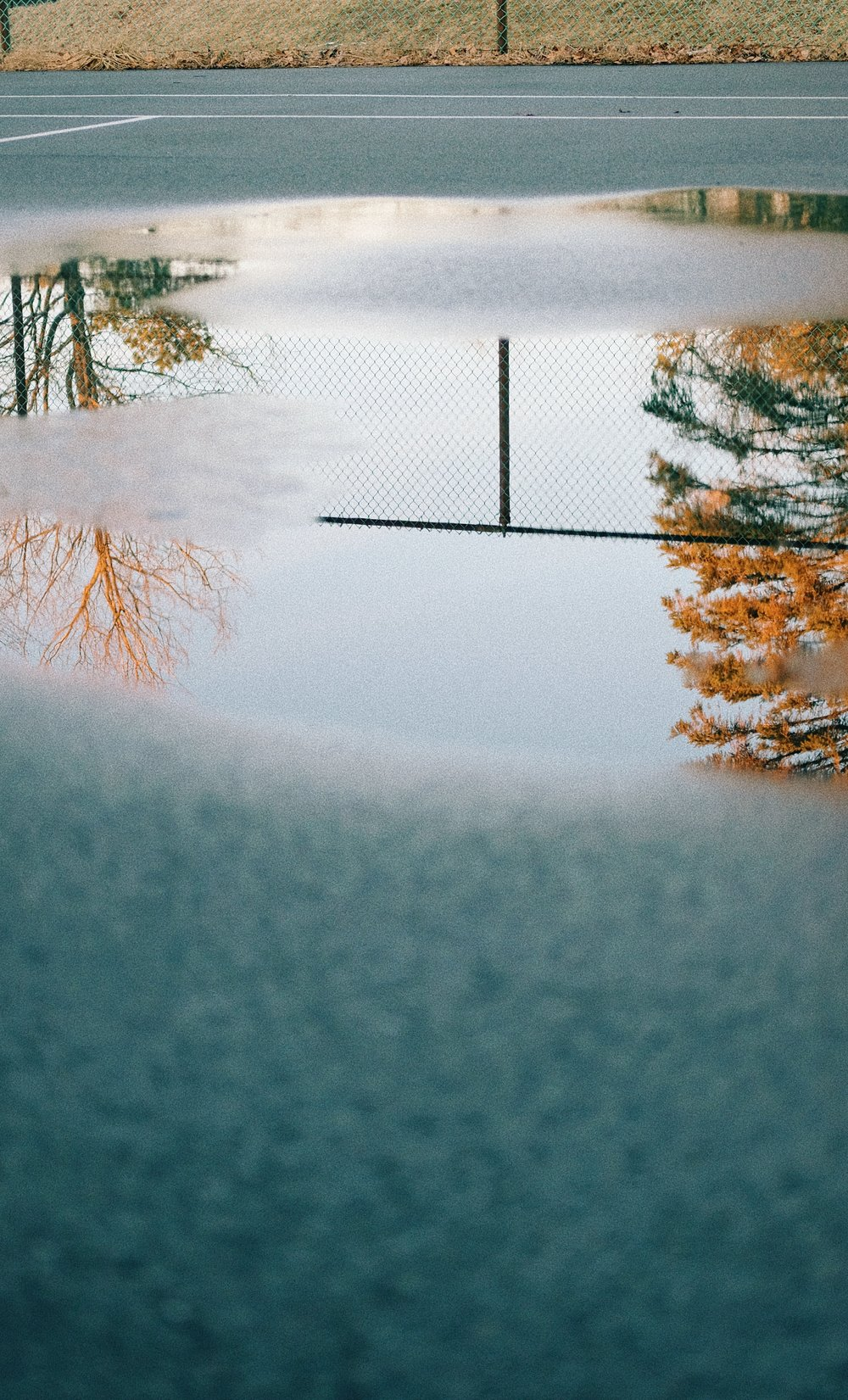laurenabbazio_puddles7.jpg