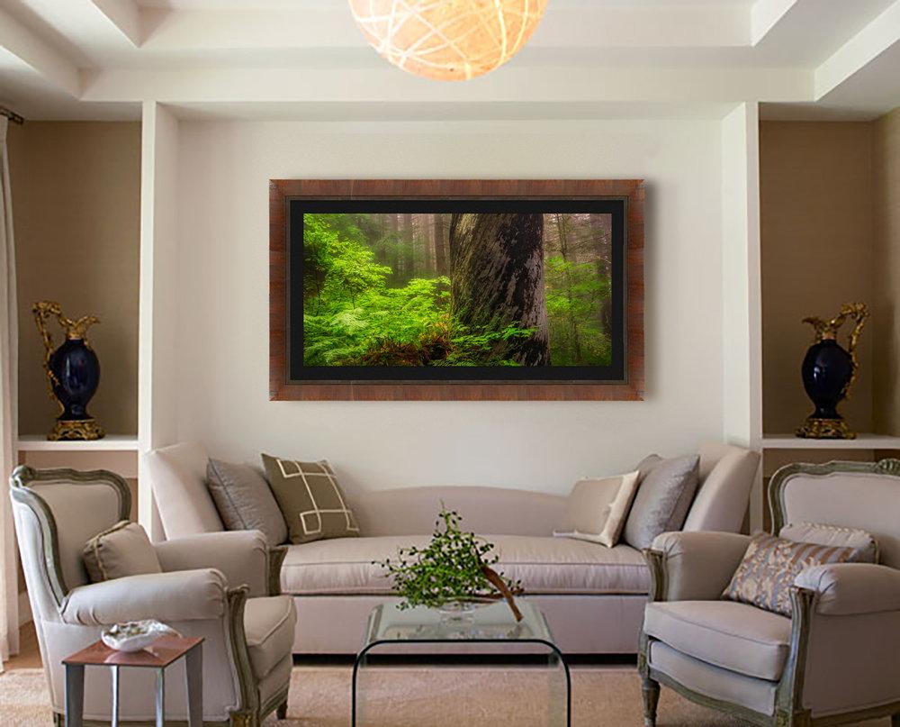 Shriners Light framed in home