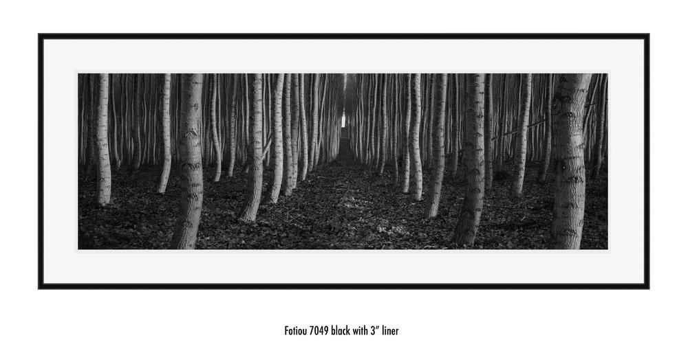 Dance white liner black frame.jpg