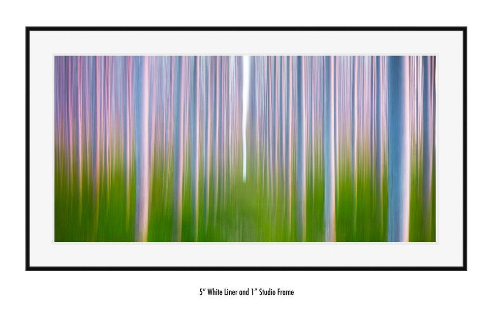 Chasing-the-Leaf-wht-liner-blk-frame.jpg