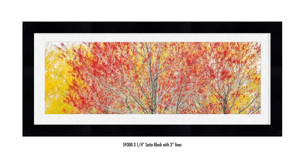 Autumn-59300-wht.jpg