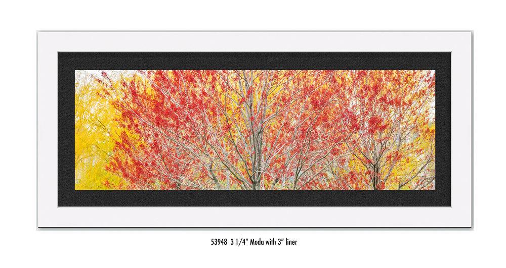 Autumn-59348-blk.jpg