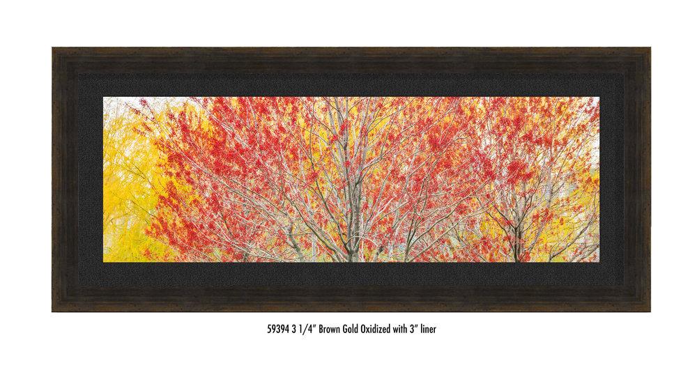 Autumn-59394-blk.jpg