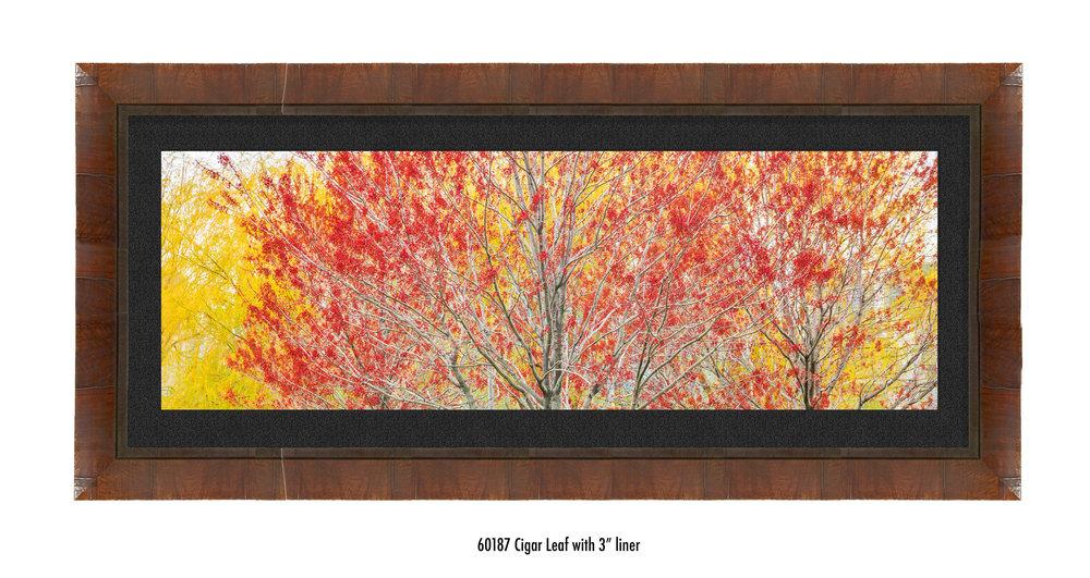 Autumn-60187-blk.jpg