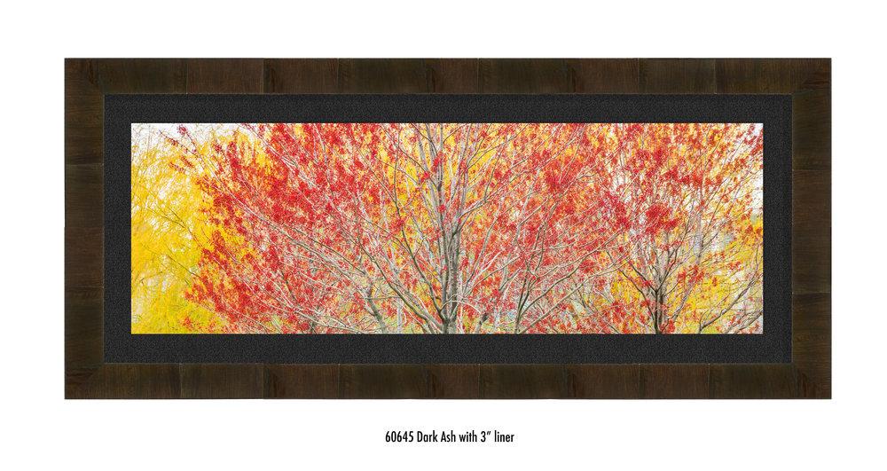 Autumn-60645-blk.jpg